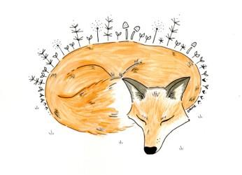 Sleeping Fox. Ink and Watercolor. 2016.