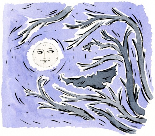 2017 Owl's Midnight Flight